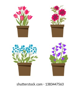 Set of flower pots, bouquet, green plants, ceramic dishes, flat style, vector illustration
