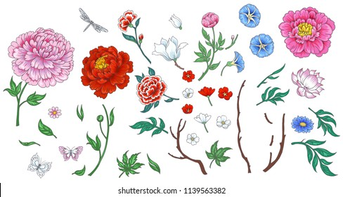 Set of flowers in Chinese style