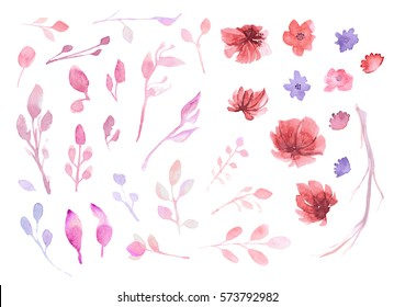 Set of flowers, leaves and branches, painted in watercolor, isolated on white. Sketched wreath, floral and herbs garland. Handdrawn Vector Watercolour style.