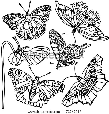 5c332ee98bbac Set of flowers, leaves, butterfly. Vector illustration. Beautiful nature.  Vintage pattern, background, coloring. Realistic monochrome drawing, tattoo,  ...