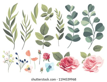 Set with flowers and leaves on a white background. Vector illustration