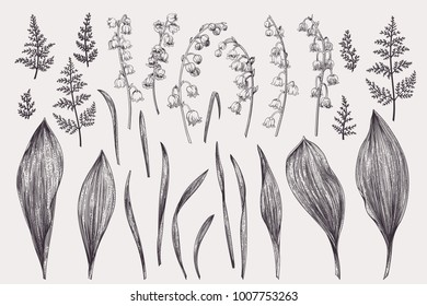 Set with flowers of a lily of the valley. Black and white.