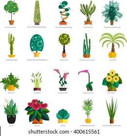 set of flowers in pot isolated for greenhouse or garden planting market vector illustration, houseplant with leaves like decoration element room at home collection, potted trees banner floristics shop