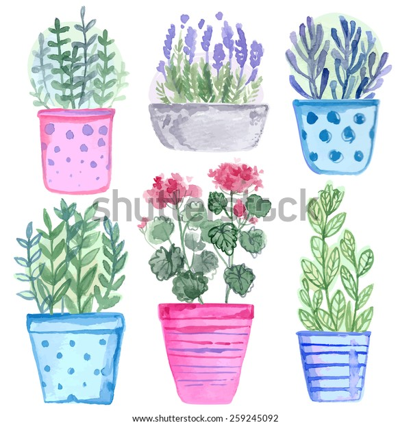 Set Flowers Pot Watercolor Vector Flowers Stock Vector Royalty Free