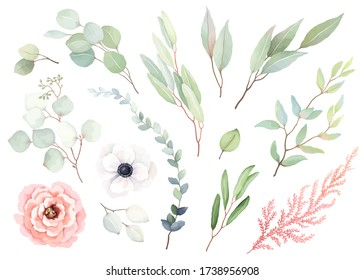 Set of flowers rose and white anemone, leaves and branches in vintage watercolor style. Vector floral illustration for design wedding card, invitation, greeting card, wrapping paper.