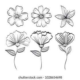 set flowers rustic and monochrome decoration,