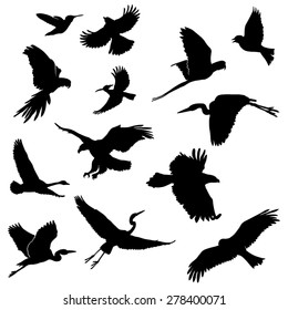 Set of Flying Birds Silhouettes. Vector Image
