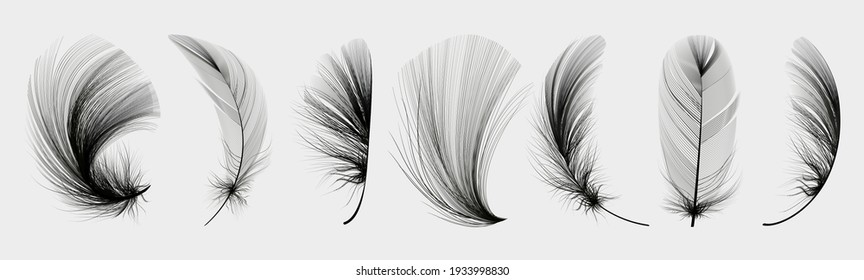 Set of flying realistic vector goose or chicken white feathers of various shapes. Ecological feather filler for pillows, blankets or down jacket.
