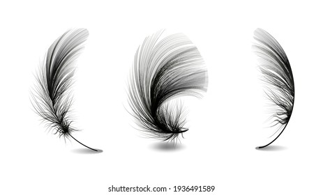 Set of flying realistic vector goose or chicken white feathers of various shapes Ecological feather filler for pillows, blankets or jackets.