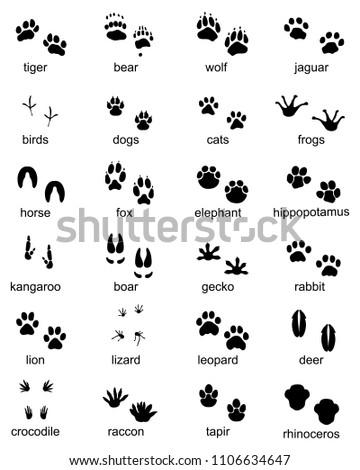 Set of footprints of