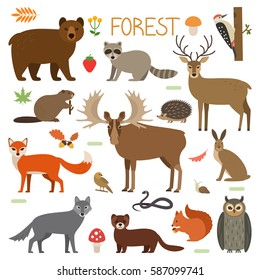 Set of forest animals, birds and plants in a cartoon style. Flat vector illustration isolate on a white background