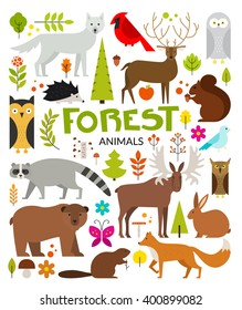 Set of forest animals made in flat style vector. Zoo cartoon collection for children books and posters. Wolf, reindeer, moose, racoon, fox,bear and other mammals. Each animal isolated and easy to use.