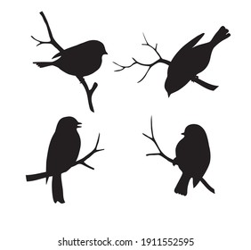 Set of forest bird  sitting on twig silhouette.  Collection of decorative bird icon. Vector stock illustration.