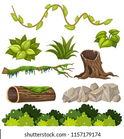 A set of forest elements illustration
