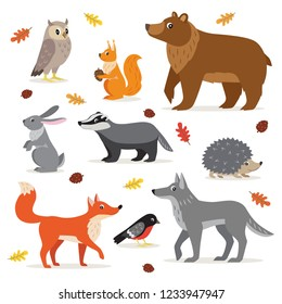 Set of forest, woodland animals isolated on white background, owl, squirrel, hare, bear, fox, wolf, badger, hedgehog bullfinch and fallen leaves vector illustration