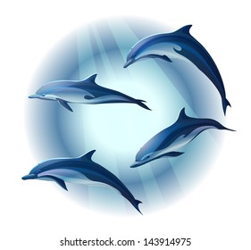 set of four dolphins, vector illustration