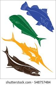 Set of four fish vectors