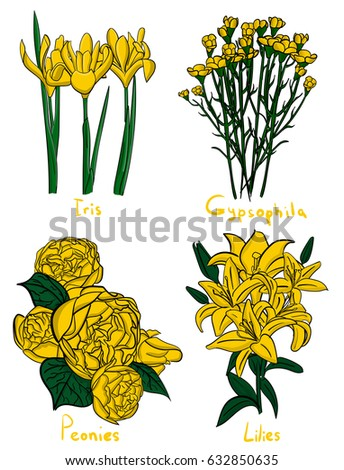Set four kinds yellow flowers names stock vector royalty free four kinds of yellow flowers with names on a white background eps 10 illustration mightylinksfo