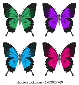 Set of four multi-colored beautiful butterflies. Vector illustration isolated on a white background.
