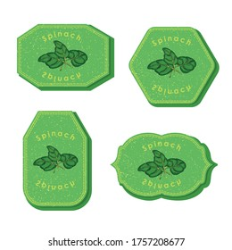 Set with Four Rectangular Labels for Spinach with Texture and Frame. Different types of Labels or Stickers for Food Market with Colored Image of Spinach. Vector EPS 10 Vector Illustration.