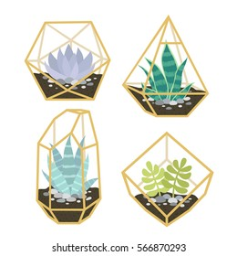 set of four of simple geometric terrariums with plants. geometric terrariums with succulent. can be used like stickers, pins, patches or for posters and greeting cards