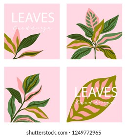 Set of four square card template. Universal trend posters with bright tropical leaves foliage on the pink background.  Stylish design for banners, brochures, magazines or sale