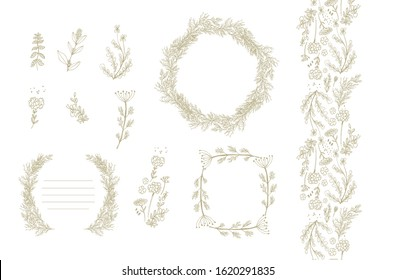 Set of frames, border decors, vignettes with aromatic herbs - dill (Anethum graveolens), virbena, rucula, fennel  (Foeniculum vulgare) on white background