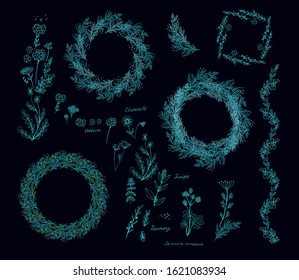 Set of frames, border decors, vignettes with aromatic herbs - dill (Anethum graveolens), virbena, rucula, fennel  (Foeniculum vulgare) on dark background