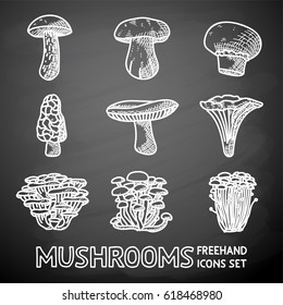 Set of freehand MUSHROOMS icons - porcini and champignon, morel, russule, chanterelle, oyster, honey agaric, enokitake. Vector illustration