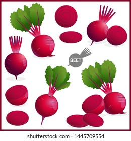 Set of fresh beet or red beetroot vegetable with green leaves in various shapes and styles in vector illustration format