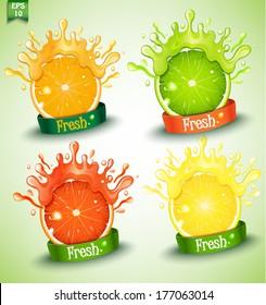 Set fresh grapefruit, lemon, orange, lime. Vector.