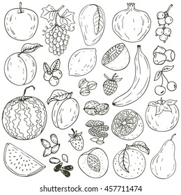 Set of fresh healthy hand-drawing fruits, nuts and berries isolated.  Organic farm illustration. Healthy lifestyle vector design elements.
