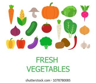 Set of fresh organic vegetables - Vector illustration