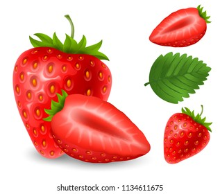Set of fresh ripe strawberry. Whole berry with leaves and half part. Vector realistic illustration. Isolated on white background.