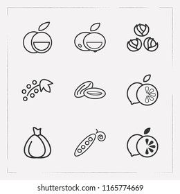 Set of fruit icons line style symbols with currant, brussels sprouts, pea pods and other icons for your web mobile app logo design.