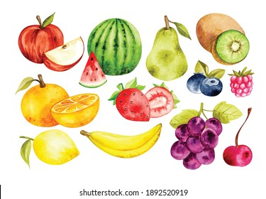 set of fruit in watercolor style vector illustration