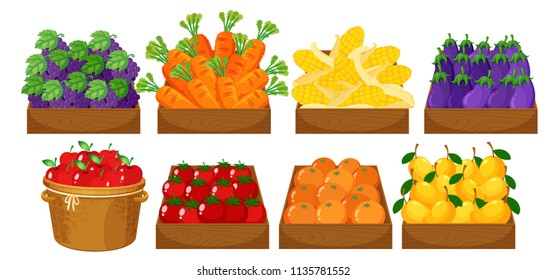 A set of fruits in basket illustration