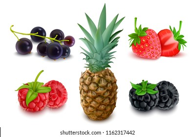 Set of Fruits and Berries, Realistic Pineapple, Blackcurrant, Blackberry, Strawberry, Raspberry, Isolated on White Background, Hand Drawn 3D Vector Illustration