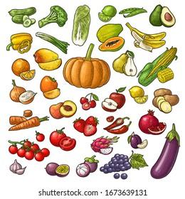 Set fruits and vegetable. Mango, lime, banana, avocado, lemon, peach, citrus, apple, pear, grape, cherry, potato, corn, pepper, potato, tomato, garlic. Vector color vintage isolated engraving