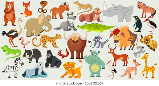 Set of funny animals, birds and reptiles from all over the world. World fauna. Vector illustration
