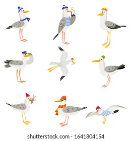 Set of funny cartoon gulls in scarves and hats. Seagull or cormorant as a boatswain or captain.