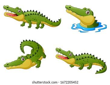 Set of funny crocodile cartoon. Vector illustration