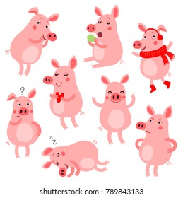 Set of funny and cute pigs. Vector