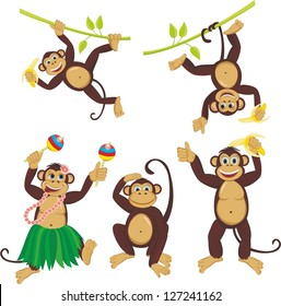 Set funny monkeys set