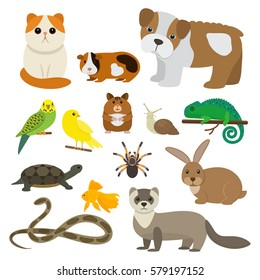 Set of funny pet character in a cartoon style, is insulated on white background. The concept of a pet store.