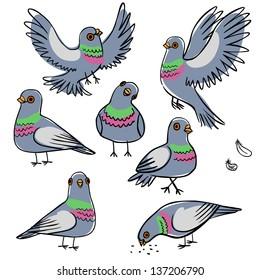 Set of funny pigeons