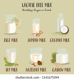 Set of Glasses with lactose-free milk. The vegetarian product, flat design. Almond-, rice-, coconut-, cashew-, hazelnuts-, soy milk. Vector illustration