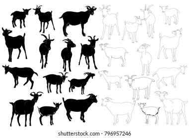 set of goat silhouettes, outline of goat