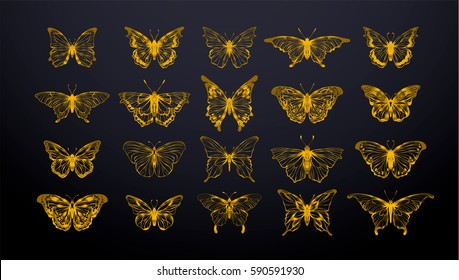 Set of gold butterflies, ink silhouettes. Glowworms, fireflies and butterflies icons isolated on white background. Hand drawn separated editable elements, Vector illustration.