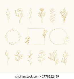 Set of golden frames, bouquets, floral arrangement. Nature flower compositions. Elegant luxury decorative elements. Fancy vector illustration.